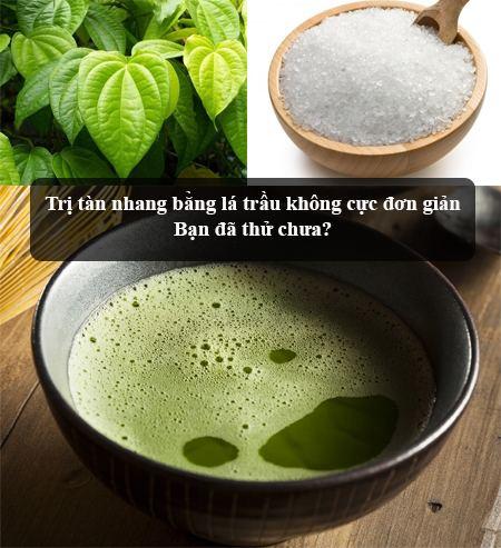 cách chữa tàn nhang bằng lá trầu không 2