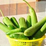 Mẹo trị tàn nhang tự nhiên hiệu quả với trái mướp